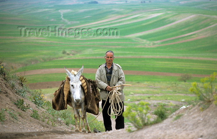 iran166: Iran - Fars province: a man and his donkey - rural scene - photo by W.Allgower - (c) Travel-Images.com - Stock Photography agency - Image Bank