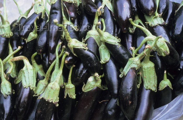 iran196: Iran: eggplants, aubergines or brinjals - Solanum melongena - photo by W.Algower - (c) Travel-Images.com - Stock Photography agency - Image Bank