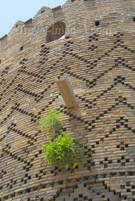 iran260: Iran - Shiraz: brickwork detail - textured brick patterning - Karim Khan Zand citadel - photo by M.Torres - (c) Travel-Images.com - Stock Photography agency - Image Bank