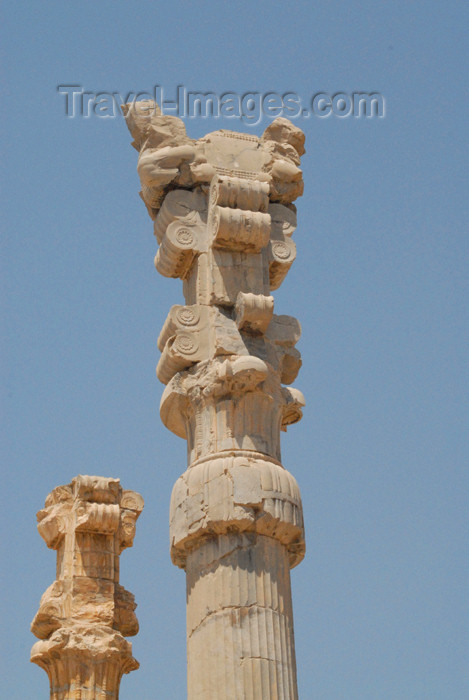 iran275: Iran - Persepolis: Gate of all the nations - columns of the central hall - double-bull in the capital - photo by M.Torres - (c) Travel-Images.com - Stock Photography agency - Image Bank