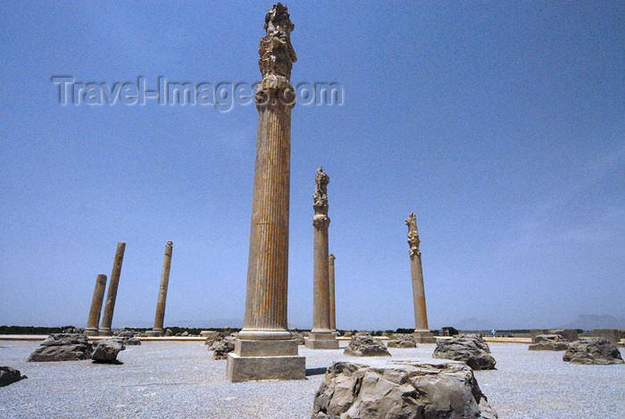 iran296: Iran - Persepolis: Apadana - photo by M.Torres - (c) Travel-Images.com - Stock Photography agency - Image Bank