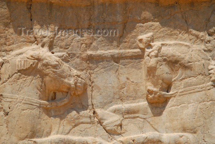 iran329: Iran - Naqsh-e Rustam: equestrian victory monument of Bahram II - horses heads - photo by M.Torres - (c) Travel-Images.com - Stock Photography agency - Image Bank