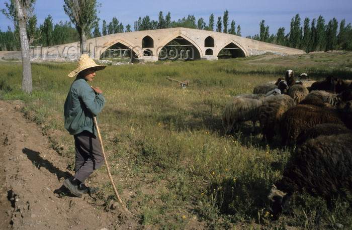 iran450: Iran - Zanjan province: shepherd  and Mir Baha-e-din Bridge - Qajar dynasty - Zanjan-Rood river - photo by W.Allgower - (c) Travel-Images.com - Stock Photography agency - Image Bank