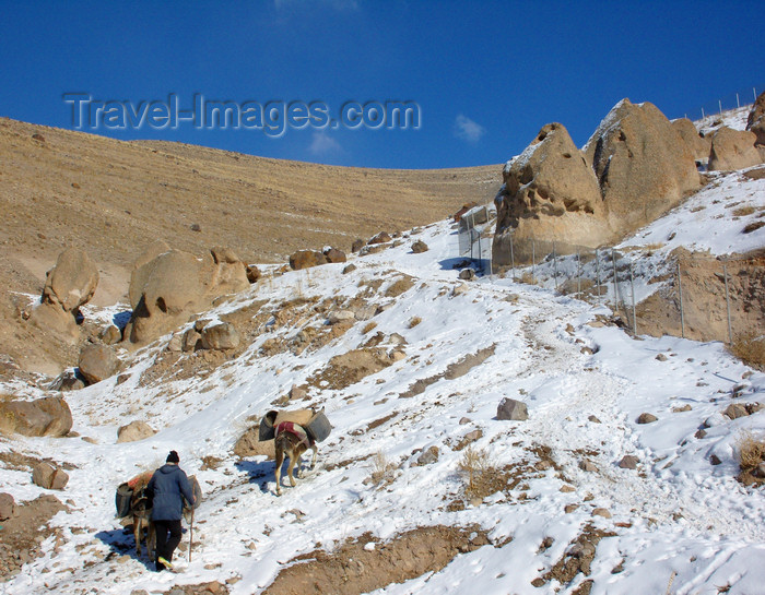 iran515: Kandovan, Osku - East Azerbaijan, Iran: donkeys and snow - the area is reputed to have the cleanest air in the country - photo by N.Mahmudova - (c) Travel-Images.com - Stock Photography agency - Image Bank