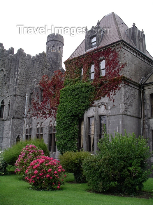 ireland71: Ireland - Ashford castle  (County Mayo): entrance (photo by R.Wallace) - (c) Travel-Images.com - Stock Photography agency - Image Bank