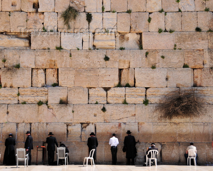 israel103: Jerusalem,  Israel: Wailing wall - men pray facind the stones laid by Herod's masons, now the Holiest of Holy Places - Western Wall / the Kotel - muro das lamentações - Mur des Lamentations - Klagemauer - photo by M.Torres - (c) Travel-Images.com - Stock Photography agency - Image Bank
