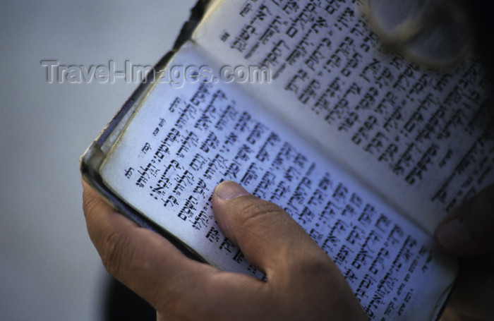 israel113: Israel - Jerusalem - reading the Torah - photo by Walter G. Allgöwer - (c) Travel-Images.com - Stock Photography agency - Image Bank