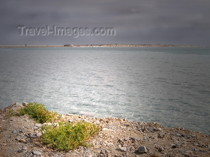 israel208: Israel - Dead sea: the sole sign of life - vegetation - photo by Efi Keren - (c) Travel-Images.com - Stock Photography agency - Image Bank