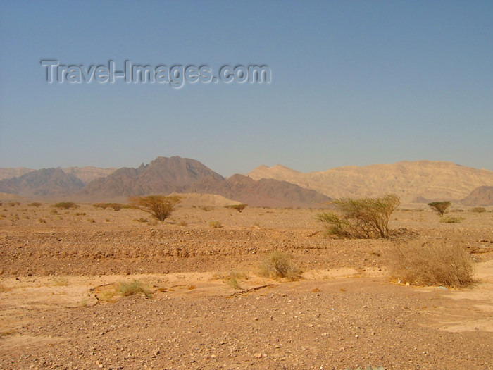 israel212: Israel - Dead sea: Judean Desert - photo by Efi Keren - (c) Travel-Images.com - Stock Photography agency - Image Bank