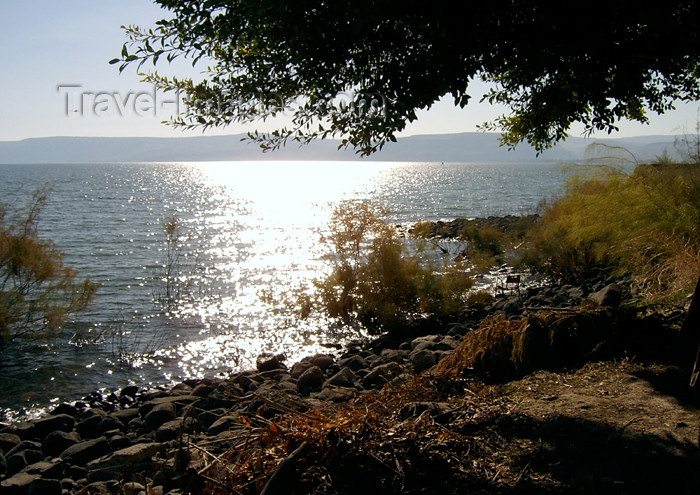israel223: Israel - Sea of Galilee / Lake Tiberias: fall - called 'Sea of Kinneret' in the Bible - photo by E.Keren - (c) Travel-Images.com - Stock Photography agency - Image Bank