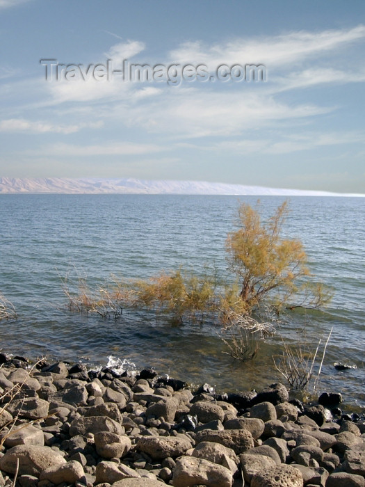 israel227: Israel - Sea of Galilee / Lake Tiberias: lake shore - Jordan Great Rift Valley - photo by E.Keren - (c) Travel-Images.com - Stock Photography agency - Image Bank