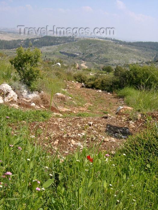 israel269: Israel - Neot Kdumim / Neot Kedumim, Center District: Israeli landscape - national nature reserve - photo by E.Keren - (c) Travel-Images.com - Stock Photography agency - Image Bank