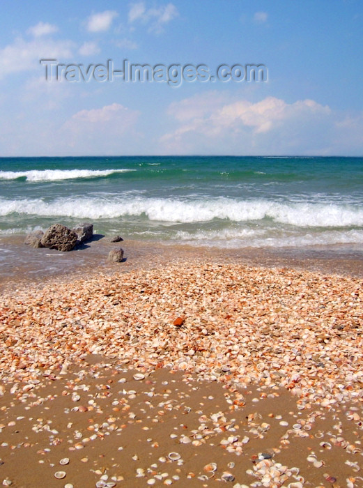 israel287: Israel - Kibbutz Sdot Yam: pebbles of the Mediterranean sea - stones - photo by Efi Keren - (c) Travel-Images.com - Stock Photography agency - Image Bank