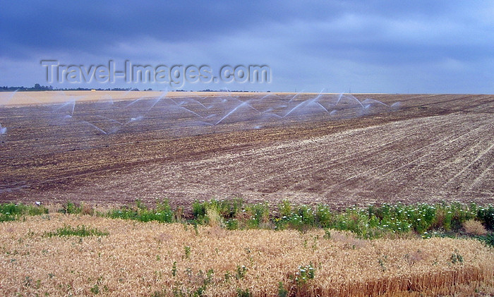 israel294: Israel - irrigated fields - Israeli agriculture - photo by E.Keren - (c) Travel-Images.com - Stock Photography agency - Image Bank