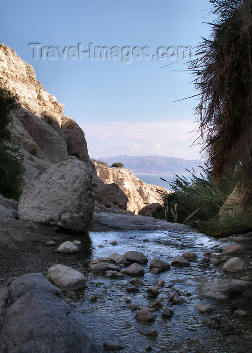 israel308: Israel - Ein Gedi National Park, South district - Dead Sea Valley - stream - photo by E.Keren - (c) Travel-Images.com - Stock Photography agency - Image Bank