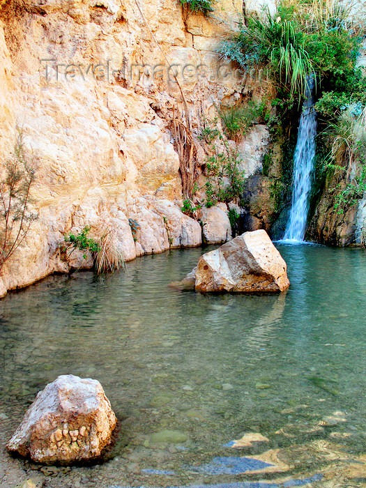 israel361: Ein Gedi oasis and National Park, South district, Israel: Shulamit waterfall - Nachal David stream - photo by E.Keren - (c) Travel-Images.com - Stock Photography agency - Image Bank