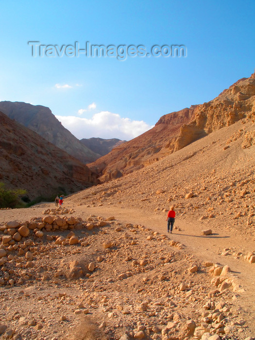 israel364: Ein Gedi oasis and National Park, South district, Israel: people strolling in the park - photo by E.Keren - (c) Travel-Images.com - Stock Photography agency - Image Bank