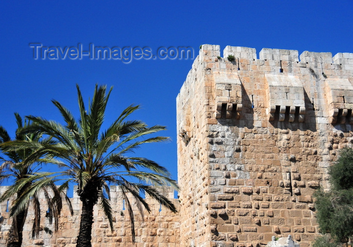 israel422: Jerusalem, Israel: Omar Ben el-Hatab square, palm trees and south tower at the Citadel's gate - photo by M.Torres - (c) Travel-Images.com - Stock Photography agency - Image Bank
