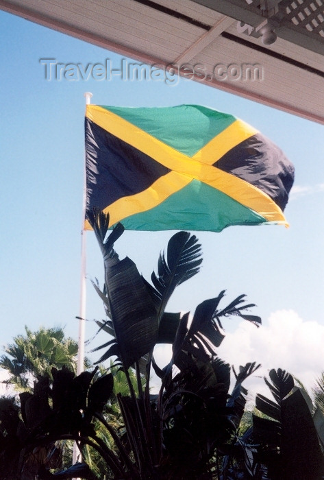 jamaica21: Jamaica - Kingston: Jamaican flag (photo by Miguel Torres) - (c) Travel-Images.com - Stock Photography agency - Image Bank