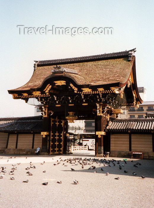japan9: Japan - Kyoto: pigeons guarding the Nijojo - the Shogun's palace - photo by M.Torres - (c) Travel-Images.com - Stock Photography agency - Image Bank