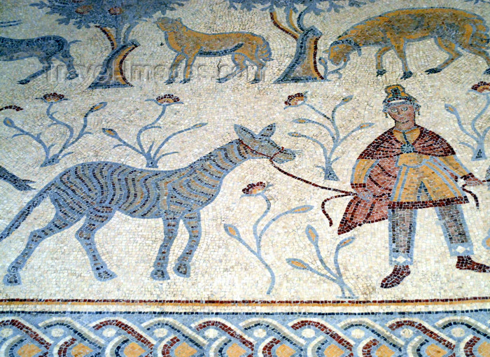 jordan118: Mount Nebo - Madaba governorate - Jordan:  Byzantine mosaic in the old diaconicon baptistery of the basilica - man with zebra - photo by M.Torres - (c) Travel-Images.com - Stock Photography agency - Image Bank