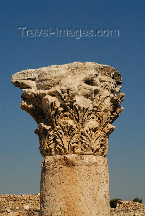 jordan221: Amman - Jordan: Byzantine Church - Corinthian capital - citadel - photo by M.Torres - (c) Travel-Images.com - Stock Photography agency - Image Bank