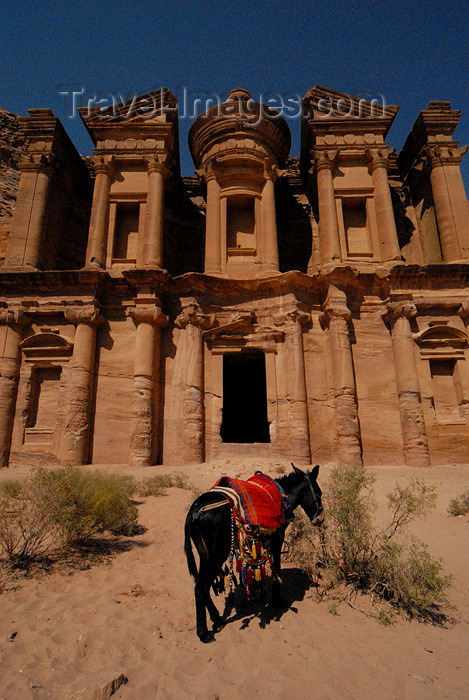 jordan244: Jordan - Petra: donkey at Ad Deir - the Monastery - UNESCO world heritage site - photo by M.Torres - (c) Travel-Images.com - Stock Photography agency - Image Bank