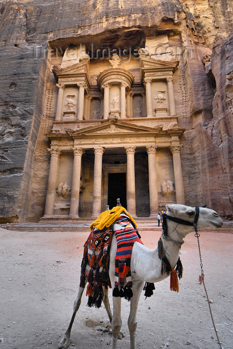 jordan260: Jordan - Petra: Khazneh - Treasury - camel - UNESCO world heritage site - photo by M.Torres - (c) Travel-Images.com - Stock Photography agency - Image Bank