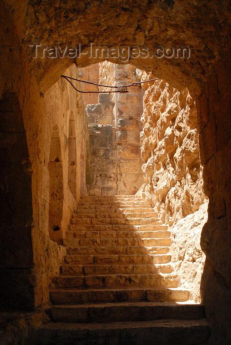 jordan68: Ajlun - Jordan: Ajlun castle - climbing - photo by M.Torres - (c) Travel-Images.com - Stock Photography agency - Image Bank