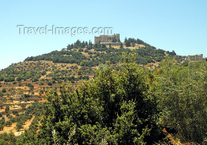 jordan82: Ajlun - Jordan: Ajlun castle - 12th century bastion against the Frankish crusaders - photo by M.Torres - (c) Travel-Images.com - Stock Photography agency - Image Bank