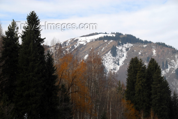 kazakhstan123: Kazakhstan - Chimbulak ski-resort, Almaty: mountain and forest - photo by M.Torres - (c) Travel-Images.com - Stock Photography agency - Image Bank