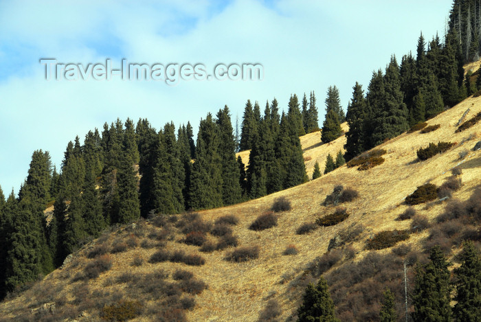 kazakhstan128: Kazakhstan - Chimbulak ski-resort, Almaty: green hills - photo by M.Torres - (c) Travel-Images.com - Stock Photography agency - Image Bank