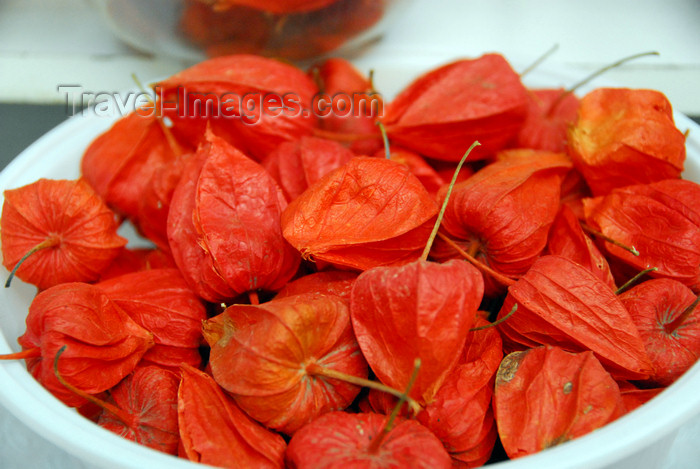 kazakhstan224: Kazakhstan, Almaty:green market, or Zelyoni Bazaar - Physalis fruit - Cape Gooseberry - Groundcherry - photo by M.Torres - (c) Travel-Images.com - Stock Photography agency - Image Bank