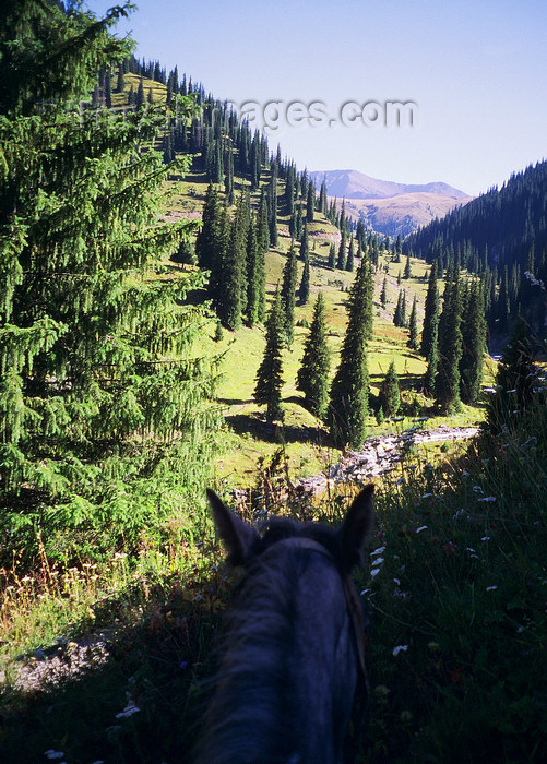 kazakhstan47: Kazakhstan - Almaty oblys: visiting the countryside on a horse - photo by E.Petitalot - (c) Travel-Images.com - Stock Photography agency - Image Bank