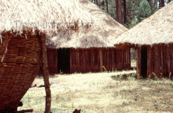 kenya40: Kenya - The Bomas of Kenya: Kikuyu village - huts with thatched roofs (photo by F.Rigaud) - (c) Travel-Images.com - Stock Photography agency - Image Bank