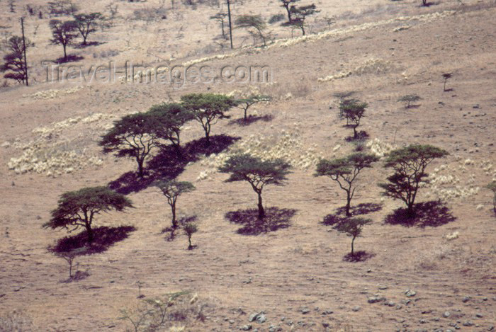 kenya43: Kenya - Ngongo Hills: the landscape - from above (photo by F.Rigaud) - (c) Travel-Images.com - Stock Photography agency - Image Bank