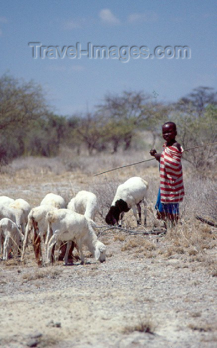 kenya47: Kenya - Olorgesailie: young shepherd (photo by F.Rigaud) - (c) Travel-Images.com - Stock Photography agency - Image Bank
