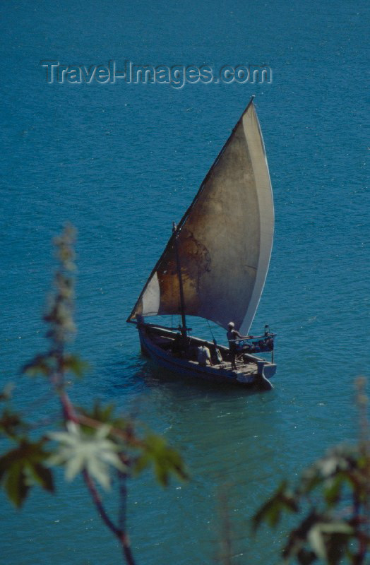 kenya9: Kenya - Kilifi: boat - dow (photo by F.Rigaud) - (c) Travel-Images.com - Stock Photography agency - Image Bank