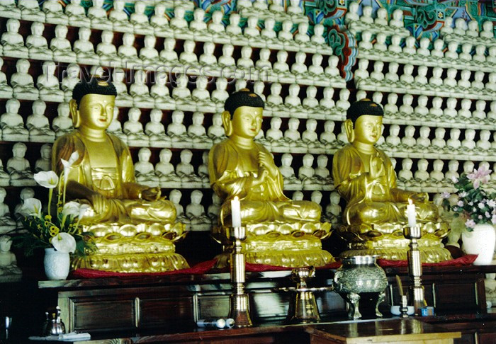 koreas66: Asia - South Korea - Kyeong Ju: Bulguk Sa - three gold Buddhas - photo by S.Lapides - (c) Travel-Images.com - Stock Photography agency - Image Bank
