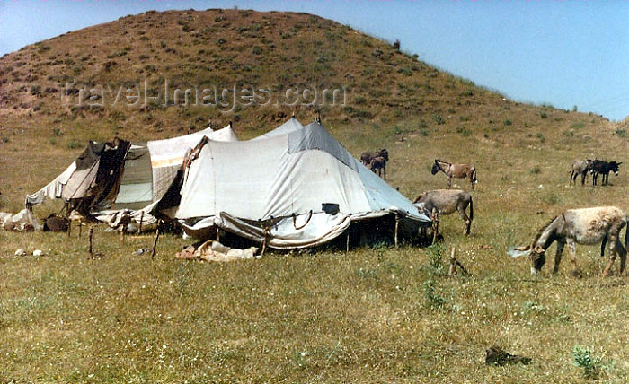 kurdistan0: Kurdistan, Syria: Kurdish camp - photo by G.Frysinger - (c) Travel-Images.com - Stock Photography agency - Image Bank