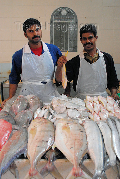 kuwait93: Kuwait city: fish market - happy fishmongers - photo by M.Torres - (c) Travel-Images.com - Stock Photography agency - the Global Image Bank