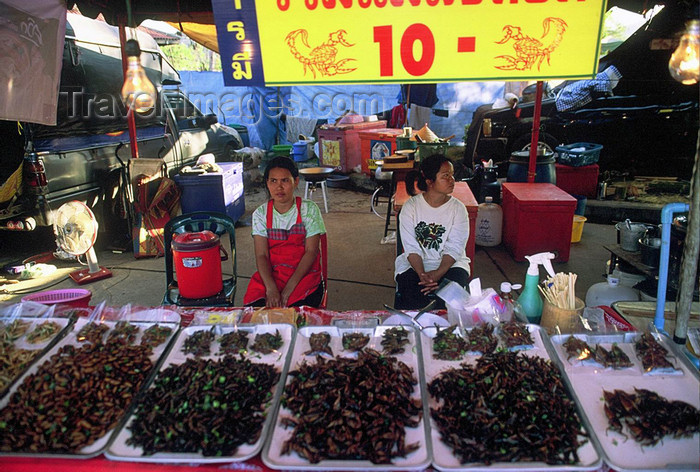 laos103: Laos: women sell scorpions and insects at the market - photo by E.Petitalot - (c) Travel-Images.com - Stock Photography agency - Image Bank