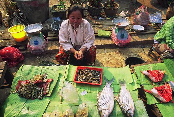 laos104: Laos: a woman sells fish and snake at the market - photo by E.Petitalot - (c) Travel-Images.com - Stock Photography agency - Image Bank