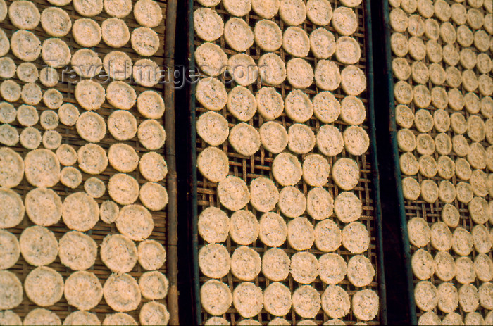 laos63: Laos - Laos - Rice pancakes drying on racks in the sun - used for Kao Soi (photo by K.Strobel) - (c) Travel-Images.com - Stock Photography agency - Image Bank