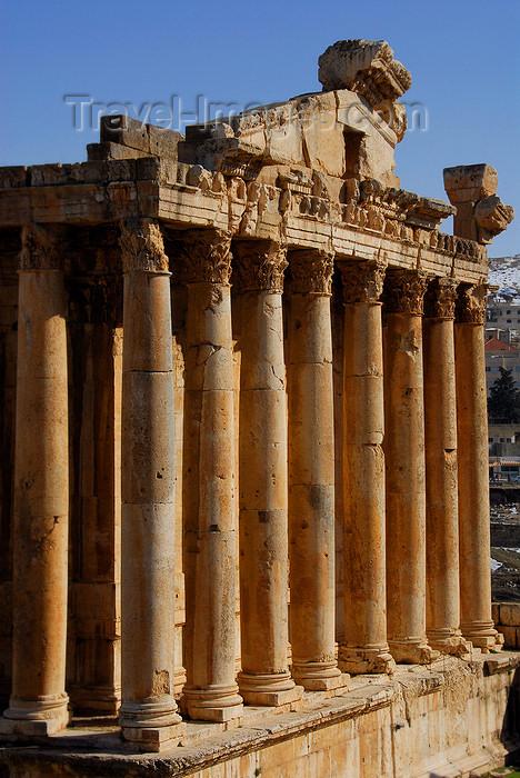 lebanon60: Lebanon, Baalbek: Temple of Bacchus - portico - photo by J.Pemberton - (c) Travel-Images.com - Stock Photography agency - Image Bank