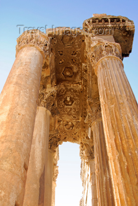 lebanon67: Lebanon, Baalbek: Temple of Bacchus - portico ceiling - photo by J.Pemberton - (c) Travel-Images.com - Stock Photography agency - Image Bank