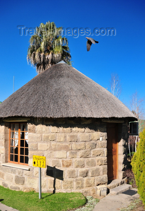 lesotho1: Maseru, Lesotho: Lancer's Inn - sandstone, wood and thatch roundavel chalet - Pioneer Road - pigeon in flight - photo by M.Torres - (c) Travel-Images.com - Stock Photography agency - Image Bank