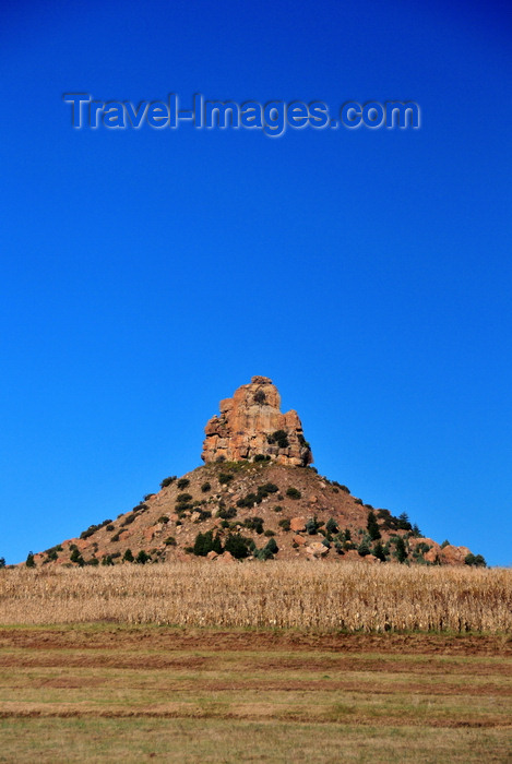 lesotho89: Thaba Bosiu, Lesotho: Qiloane pinnacle, hill crowned by a pillar of Cave Sandstone, in the middle of a corn field - photo by M.Torres - (c) Travel-Images.com - Stock Photography agency - Image Bank