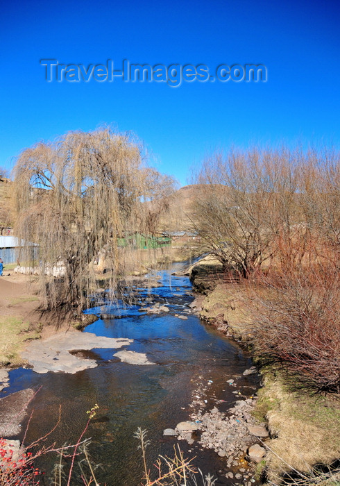 lesotho98: Ha Ramohope, Lesotho: river and willows seen from the A3 road - photo by M.Torres - (c) Travel-Images.com - Stock Photography agency - Image Bank