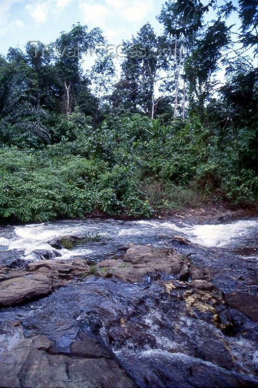 liberia18: Grand Bassa County, Liberia, West Africa: stream in the jungle - rapids - photo by M.Sturges - (c) Travel-Images.com - Stock Photography agency - Image Bank